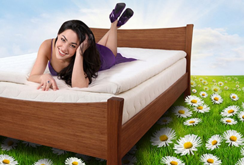 Organic Mattress, Natural Latex Mattresses, and Organic Bedding | The Natural Sleep Store