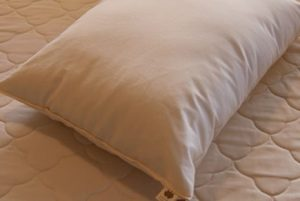 Summer Giveaway!  Sachi Kapok Pillow Review