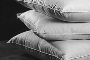Natural and Organic Pillows