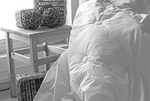 Organic Comforters and Duvets